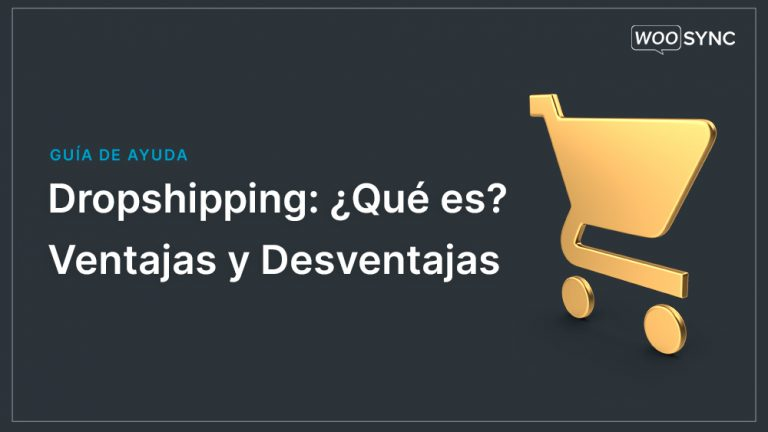 que es dropshipping